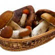 Stock Photo: Basket with mushrooms isolated on white background.