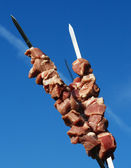 Shashlik on the blue sky background. — Stock Photo