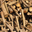 Pile of firewood. — Stock Photo