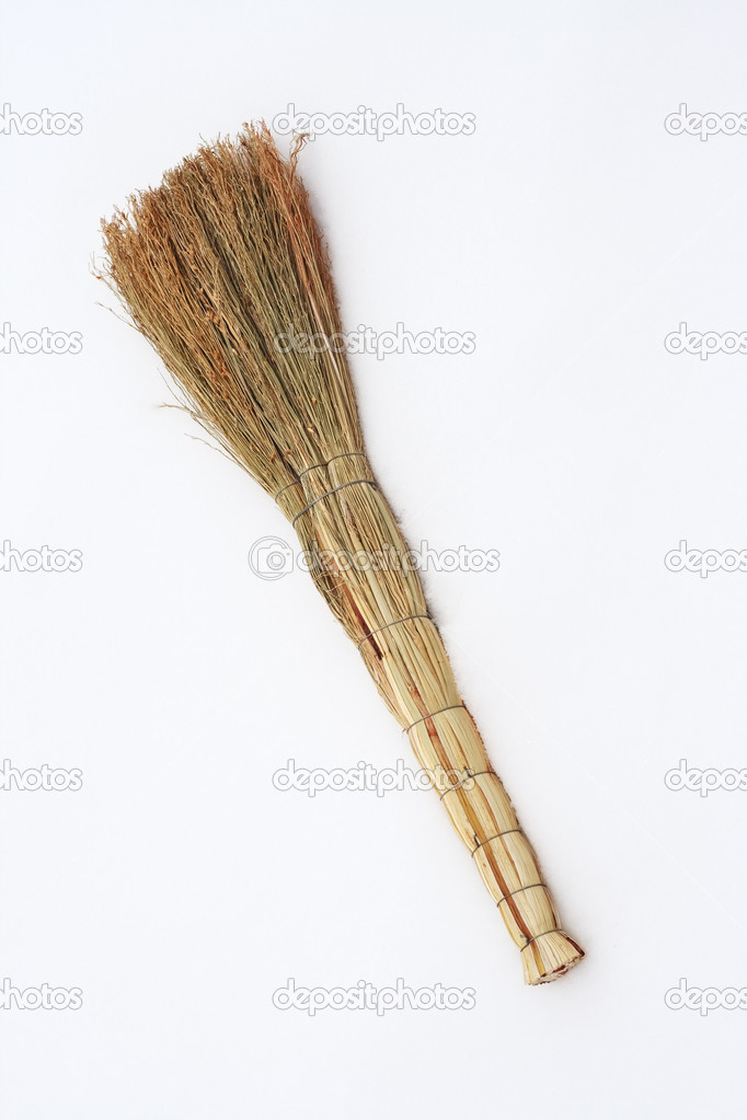 Natural broom in the fresh snow. — Stock Photo #9232177
