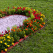 Bed of flowers in the shape of a heart — Stock Photo