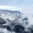 Winter at Great Smoky Mountain — Stock Photo #10407528