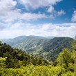 Mountain valley at sunny day — Stock Photo