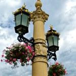 Flower basket on street lamp — Stock Photo #9213290