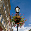Stock Photo: Old streetlight with flowers
