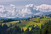 Yaz sabah dağ manzarası — Stok fotoğraf