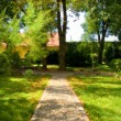 Stock Photo: Garden stone path with grass