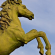 Bronze statue of horse — Stock Photo