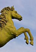 Statue en bronze de cheval — Photo