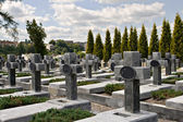 Graveyard — Stock Photo