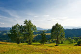 Rural landscape with trees, hills and mountains — Stock Photo