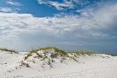 Dune de sable blanc — Photo