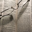 Reading glasses on book — Stock Photo #9331201