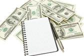 Caderno espiral e uma caneta em fundo de dólar — Fotografia Stock