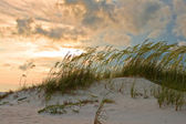 Sand dune ripples — Stock Photo