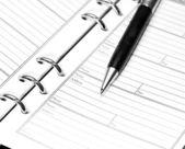 Pióra na notebooka — Zdjęcie stockowe