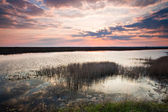 Beautiful sunset over lake — Stock fotografie