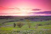 Green farmland and beautiful sunset — Stock Photo