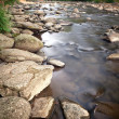 Small mountain creek — Stock Photo