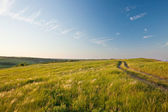 Evening in a summer steppe — Stock Photo