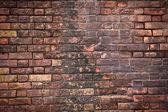 Tekstury ścian cegła — Zdjęcie stockowe