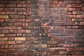 Cihlové zdi textury — Stock fotografie