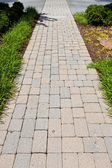 Stone pathway — Stock Photo