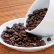 White cup with coffee beans — Stock Photo