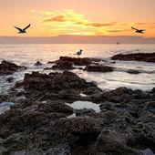 Rocky coastal view — Stock Photo