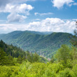 Mountain valley at sunny day — Stock Photo #9553857