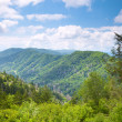 Mountain valley at sunny day — Stock Photo #9554506