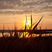 Lake sunset — Stock Photo