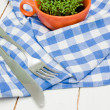 Sprouts of cress in an orange cup, fork and knife on checkered napkin — Stock Photo