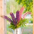 Bouquet of lupines in the window — Stock Photo