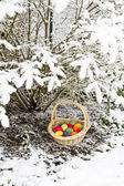 Easter Eggs in Snow — Stock Photo