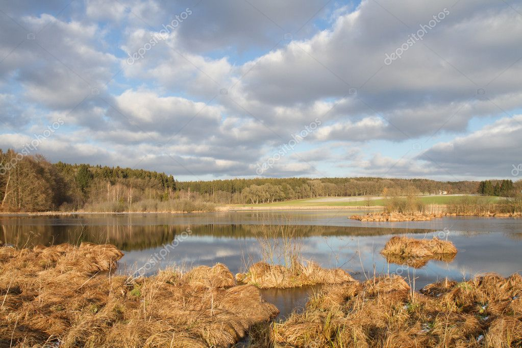 Фотообои Small lake in Bavaria, Germany, in late autumn