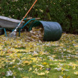 Stock Photo: Raking autumn foliage