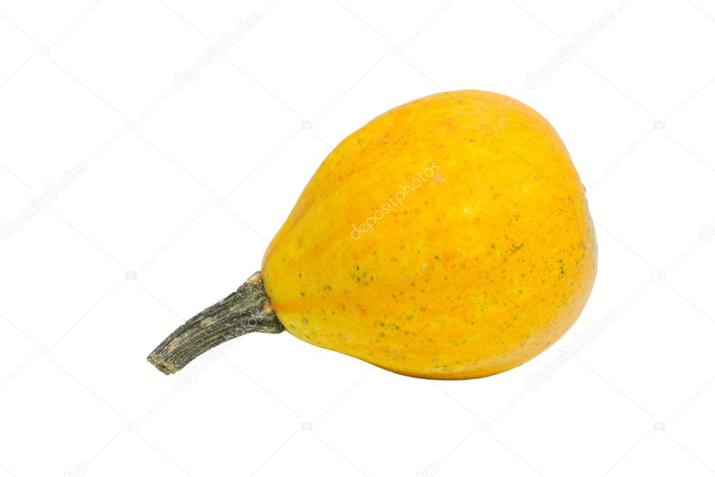 Ornamental pumkin isolated on white background  Stock Photo #9161671