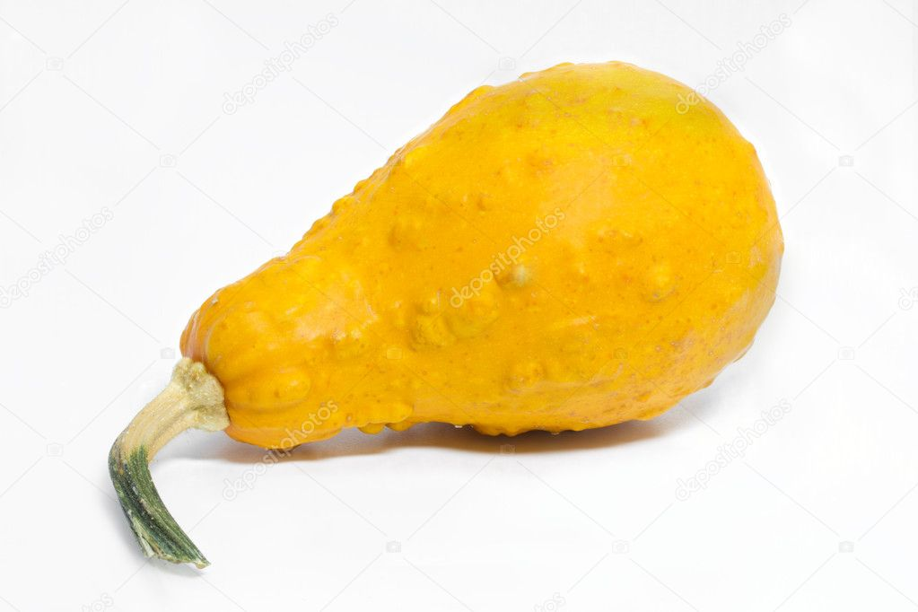 Ornamental pumkin isolated on white background — Stock Photo #9161680
