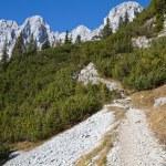 Hiking in the Austrian alps (Zahmer Kaiser Mountains) — Stock Photo