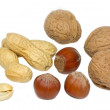 Selection of nuts on white background — Stock Photo