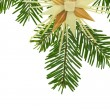 Straw star on a fir twig as christmas decoration — Stok fotoğraf
