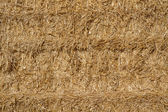 Golden straw in a haystack as background — Stock Photo
