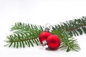 Malé borové větve stromu s vánoční koule — Stock fotografie