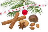 Nuts and cinnamon sticks with fir twig on white background — ストック写真