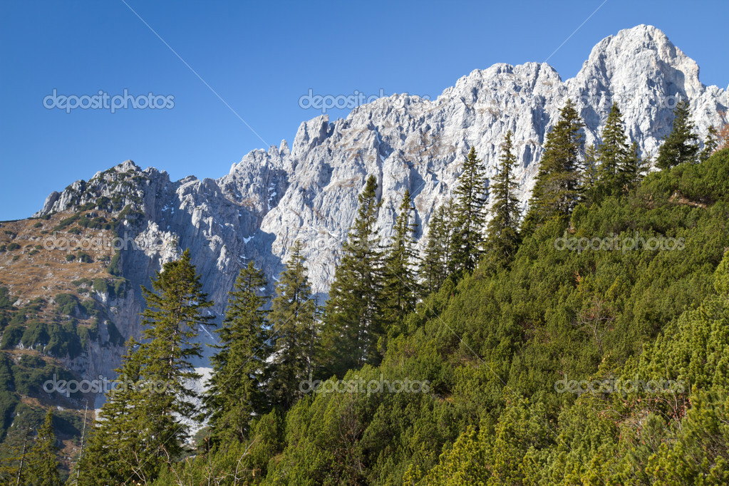 Hiking in the Austrian alps (Zahmer Kaiser Mountains)  Stock Photo #9171914