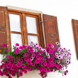 Windows with flower decoration in the town of Mittenwald, Bavaria — Stock Photo #9191044