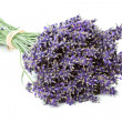 Bunch of dried Lavender flowers (Lavandula angustifolia) — Stock Photo