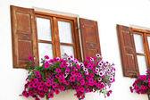 Mittenwald, bavyera kasabada çiçek dekorasyonu ile windows — Stok fotoğraf