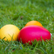 Stock Photo: Colored easter eggs on a lawn